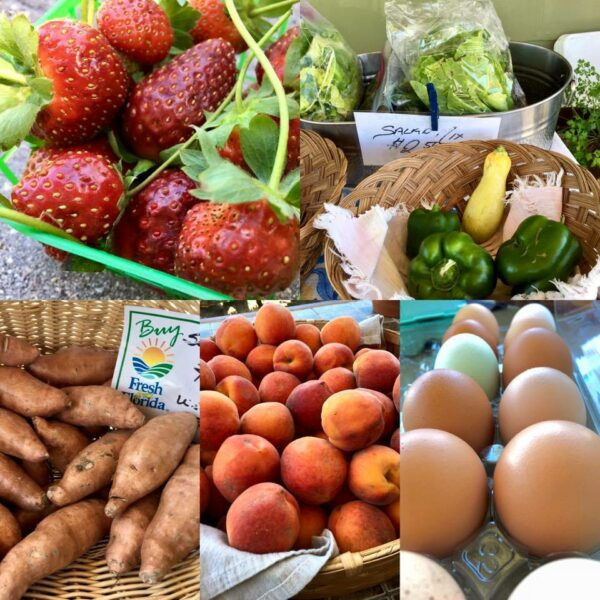 5 REASONS TO VISIT A FARMER'S MARKET