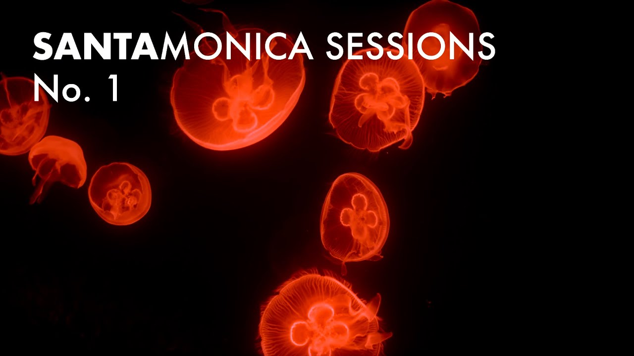 Santa Monica Sessions No. 1: Tape Loops + Electro Acoustics + Oscillating Feedback