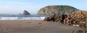 Brookings, on the Southern Oregon Coast