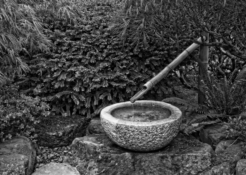 Bamboo Fountain BW_MG_3778