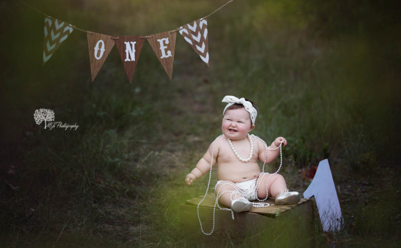 Sugar Land first birthday photographer – MJ's Photography