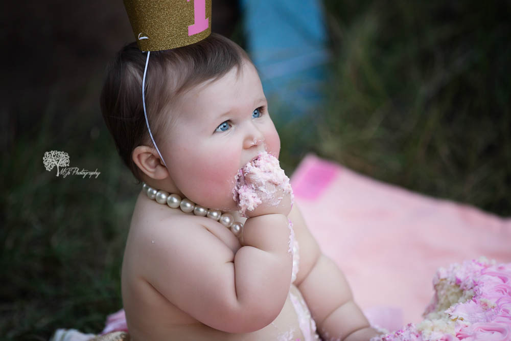 Sugar Land first birthday photographer