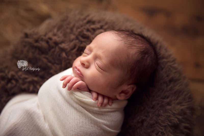 The Woodlands Texas twin newborn photographer