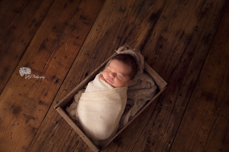 Richmond newborn photography