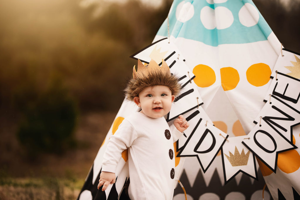 Sugar land first birthday photography