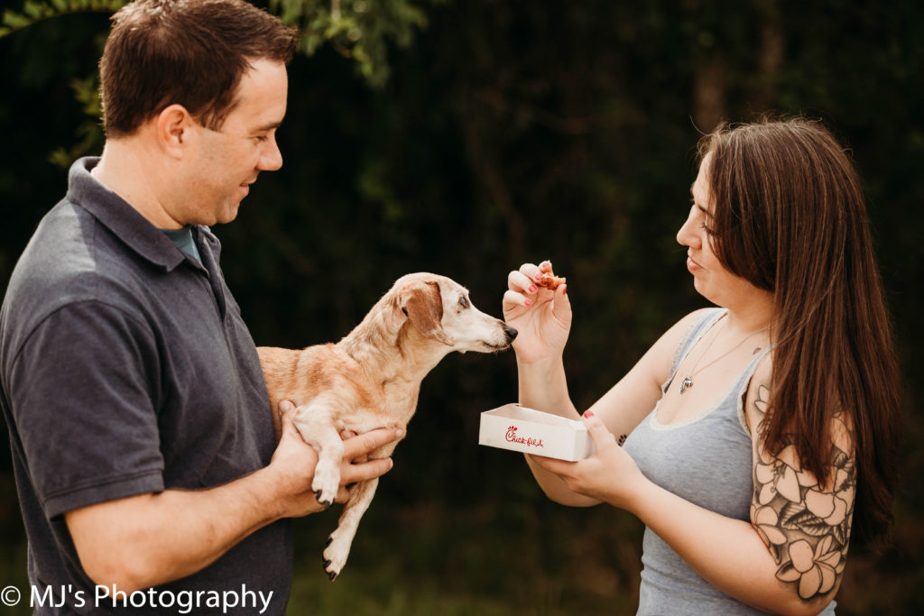 Fulshear pet photographer