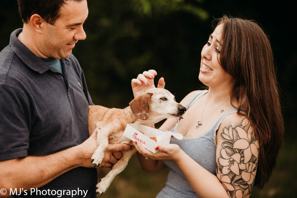 Fulshear pet photographer