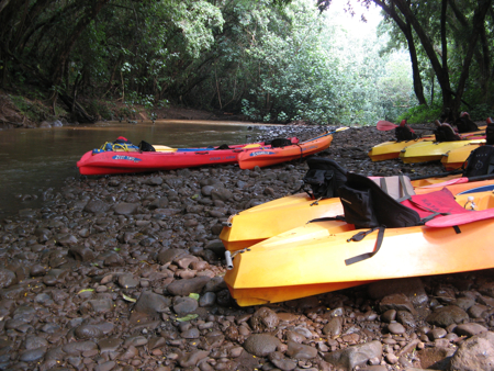 Wailua River Kayaks Parked at Secret Falls Trailhead