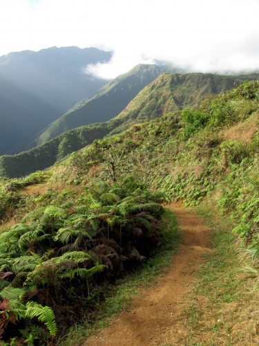 waihee ridge trail on maui