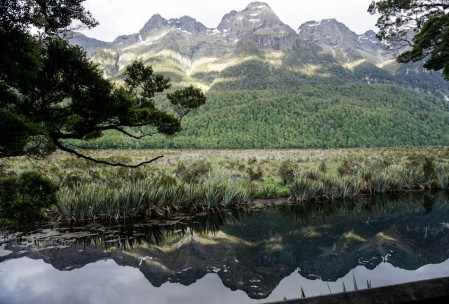 Mirror Pond on the way to Milford Sound