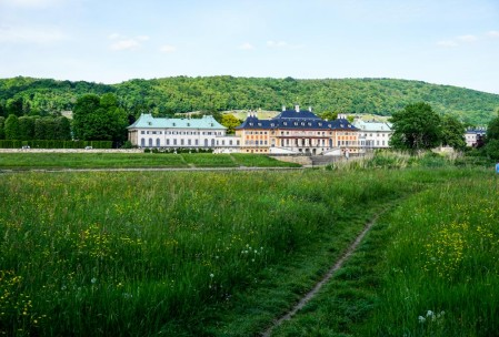 Schloß Pillnitz from the Radweg