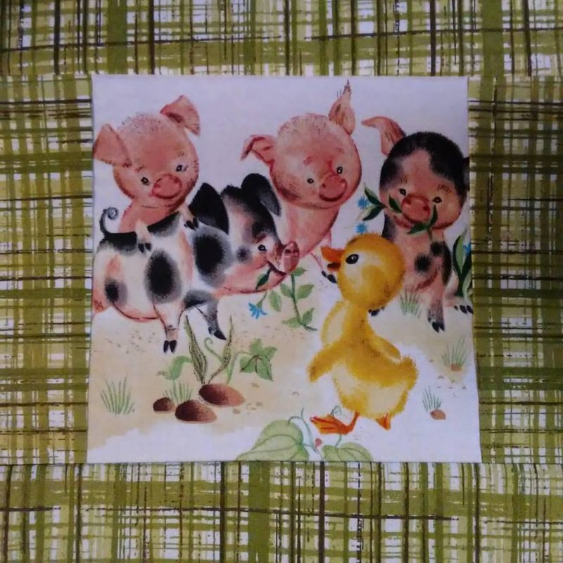 duck panel block with pigs