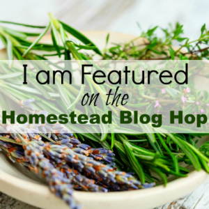 homestead bloghop featured icon