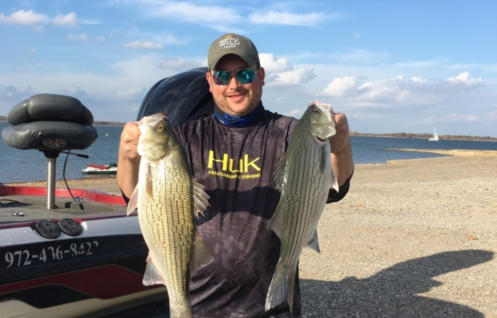Lake Lewisville Fishing Guide - Hybrid Bass