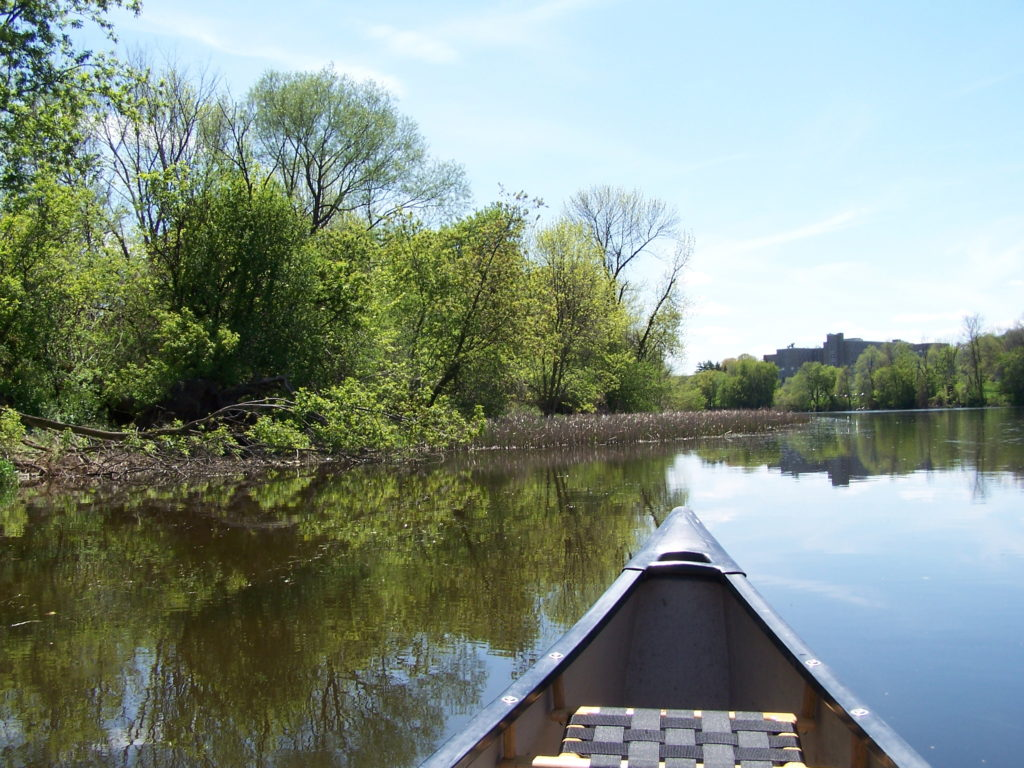 The bow of a canoe points along the shoreline of the Rideau River