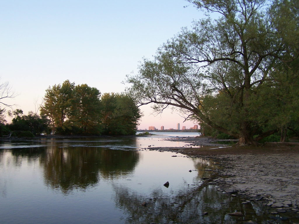 The placid waters of the Ottawa River near Mud Lake reflect sunset's glow and shoreline trees.