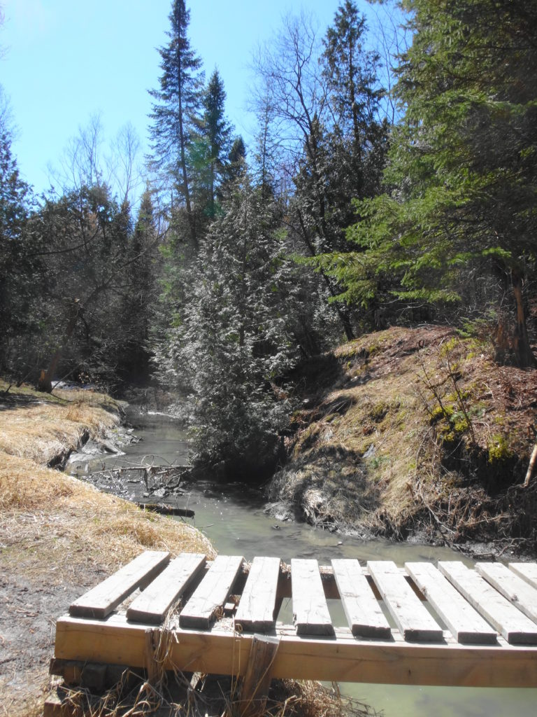 A slatted footbridge crosses Bilberry Creek.