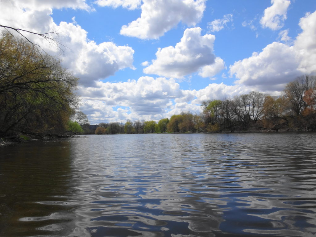 The Rideau River looks placid under a blue sky sprinkled with fair-weather cumulus clouds.