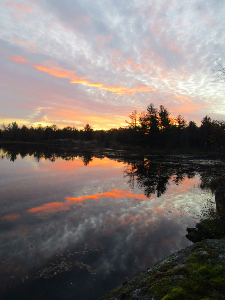 Dawn colours reflect in the still water of Lovers Pond in the Carp Hills.
