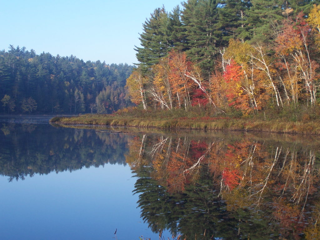 Red and gold trees stand on the shoreline of the Barron River, reflected in the calm water.