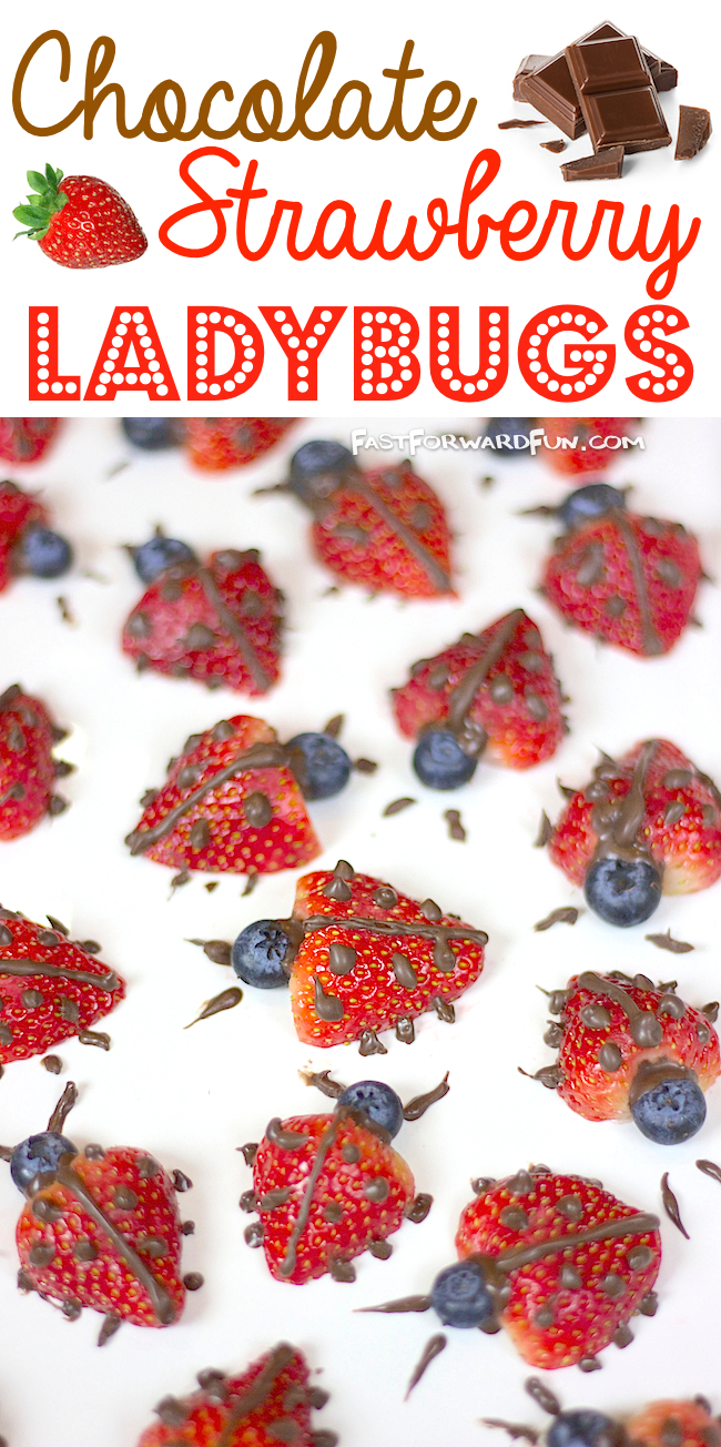 Chocolate Strawberry Ladybugs -- Cute and easy way to get kids to eat their fruit! I LOVE this idea for parties.