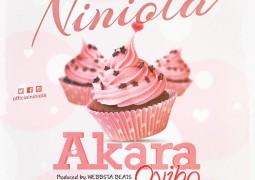 Niniola – Akara Oyibo Lyrics