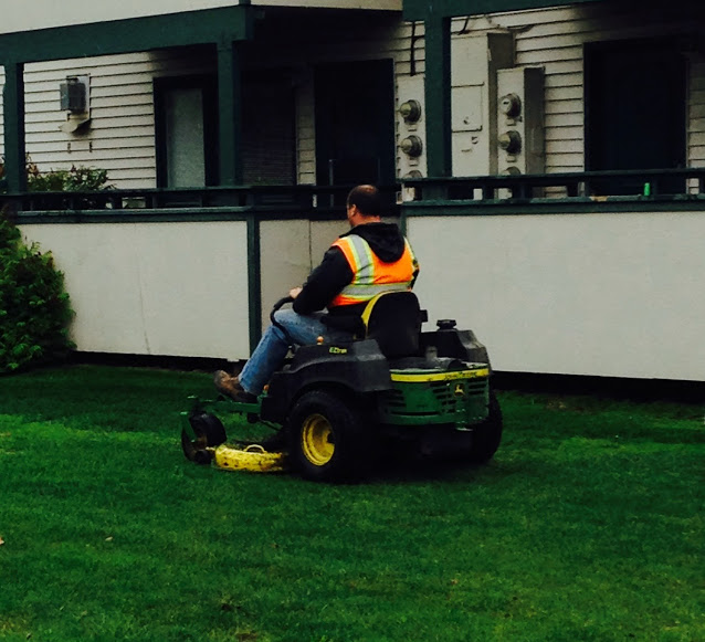 Lawn mowing anchorage 2014