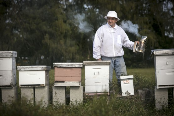 Steven Byers of Bee Healthy Honey Farms in Delray Beach tends his hives. Photo by Bruce Bennett