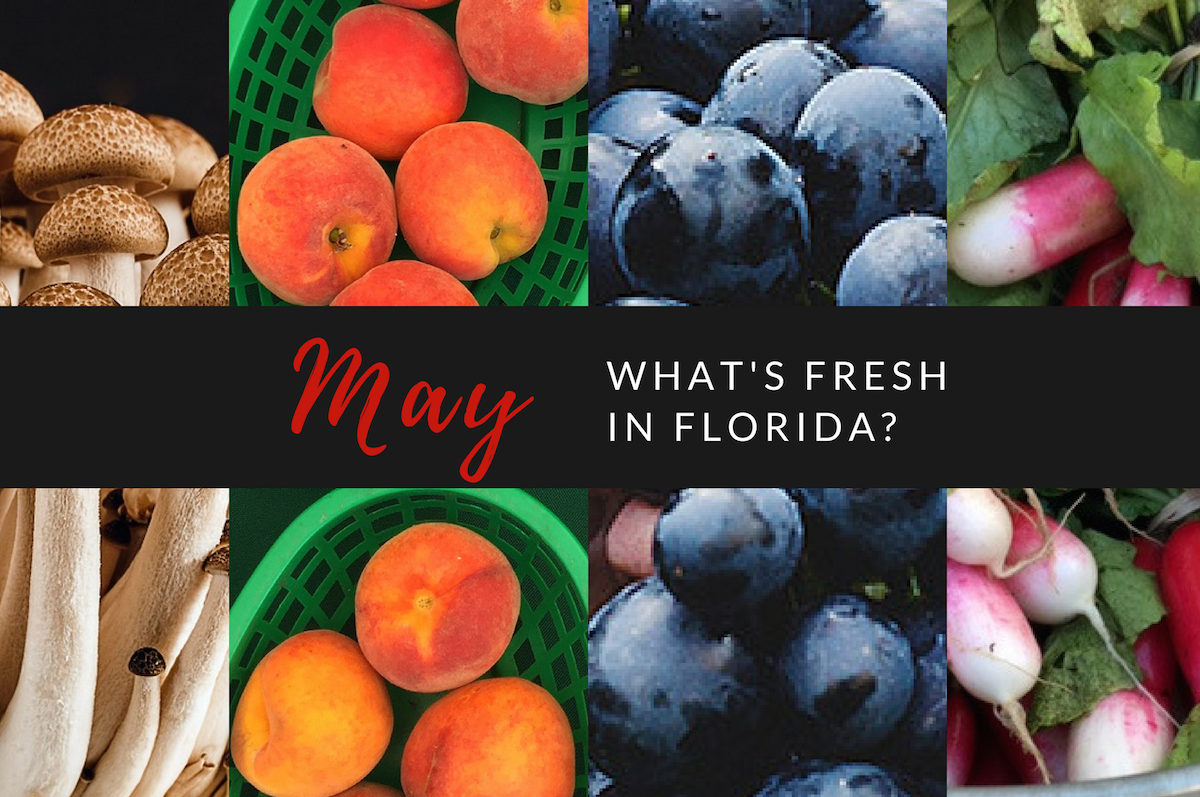 What's Fresh in May