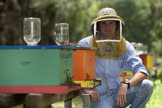 UF Professor Jamie Ellis handling honey bees during a research session./ Photo by Tyler Jones, courtesy of UF/IFAS