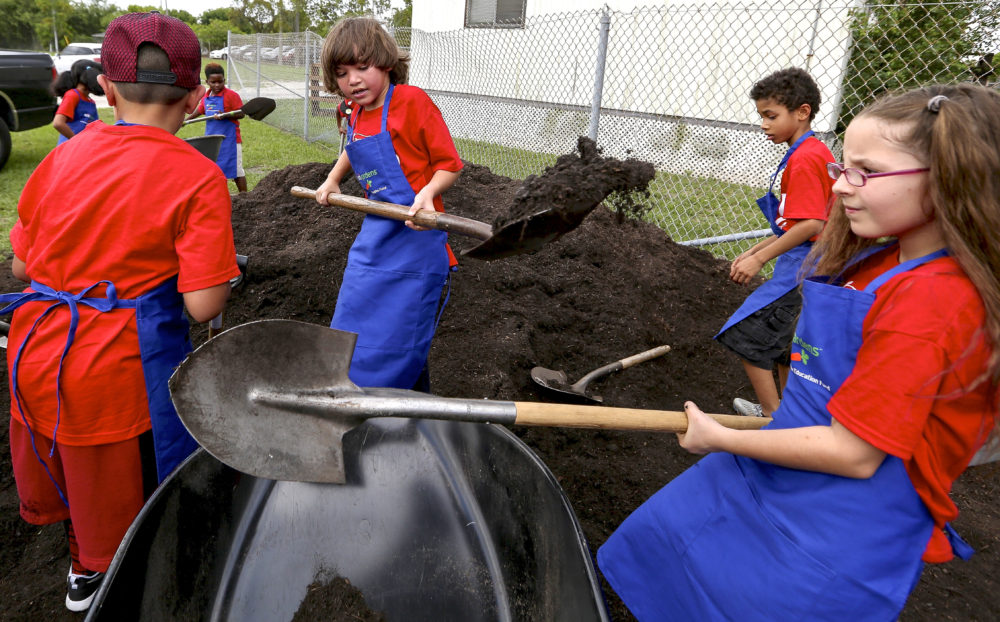 Growing Miami's Food Forests at Schools