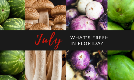 What's Fresh in Florida in July?