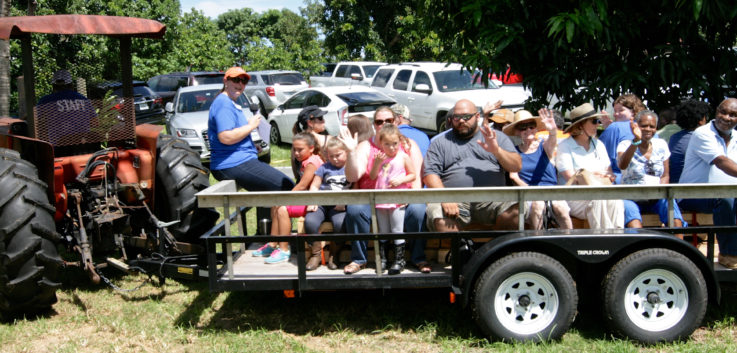 "At the annual Mango Madness, held each July at Erickson Farm in Canal Point, part of the ""agritainment"" includes a tram ride through the groves."
