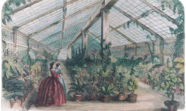 How have the White House gardens changed over time?