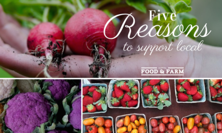 Fresh From Florida: 5 Reasons to Support Local
