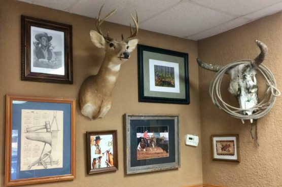 The walls at Crackers Cafe feature a variety of unusual items.