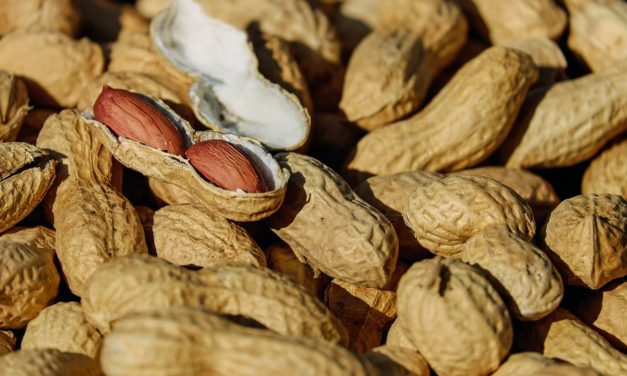 Five fun facts about peanuts (irony: It's not a nut)