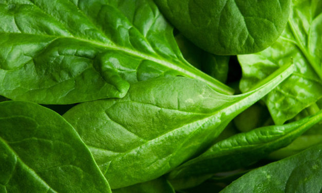 March 26 is National Spinach Day, so here are five fun facts