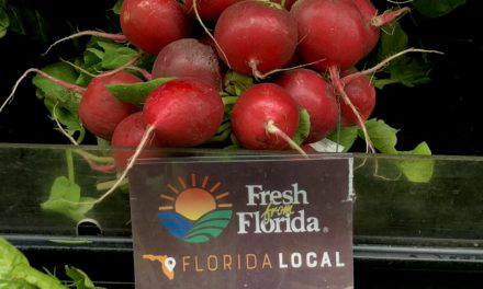 5 Places to Find Fresh from Florida Ingredients