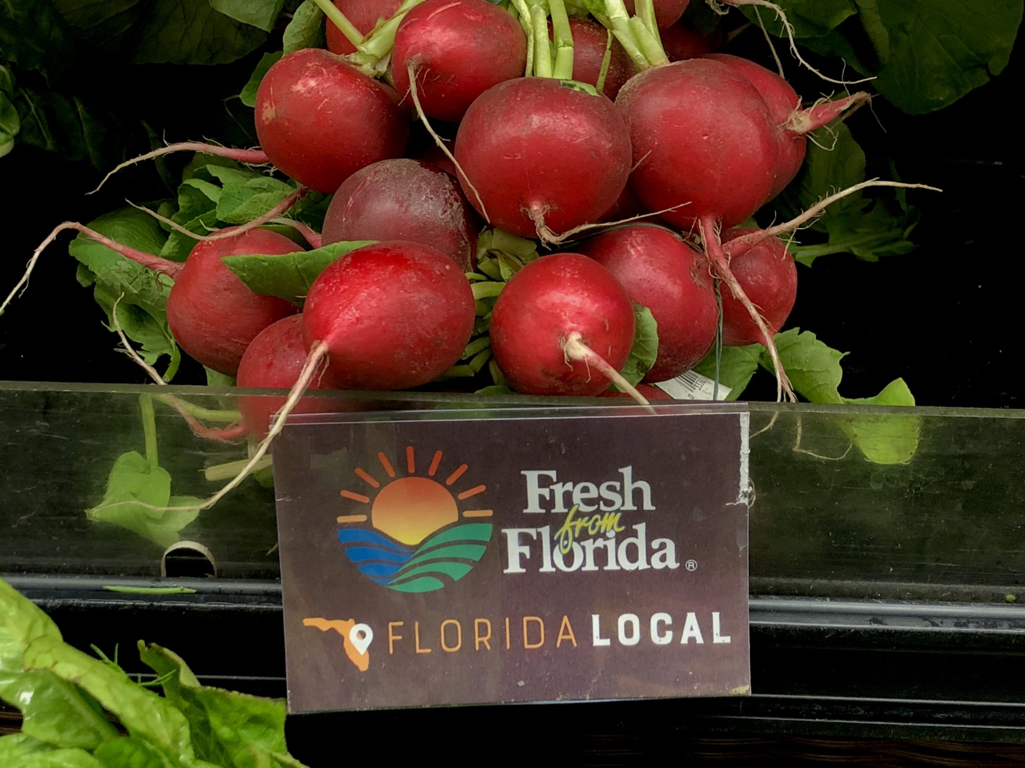 Fresh from Florida Radishes from Publix