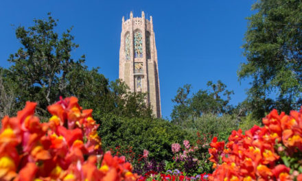 Bok Tower Gardens in Lake Wales releases 2018-19 schedule of events