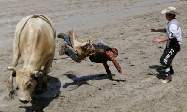 143rd Annual  Silver Spurs Rodeo 2019