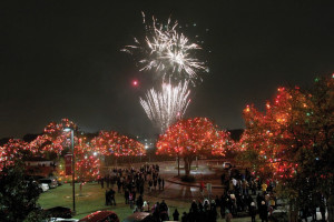Guests enjoy a fireworks extravaganza during the finale of the Light the Way event.