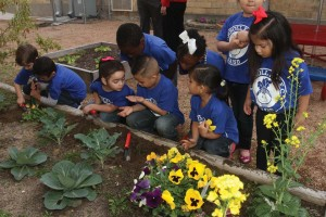 Children from Carroll observe a worm found in the vegetable garden.