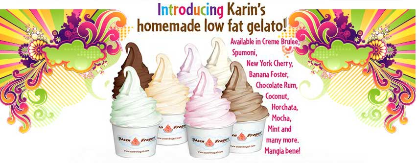 web-specials-homemade-lowfat-gelato-yozen-frogurt-best-frozen-yogurt-shop-store-westlake-village