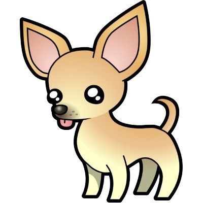Found Dog   Unknown   Chihuahua