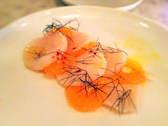 Estela - raw scallops with citrus and bronze fennel