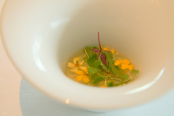 tomato water, herbs and jellied ham