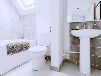 A New Survey Reveals Preferred Bathroom Features
