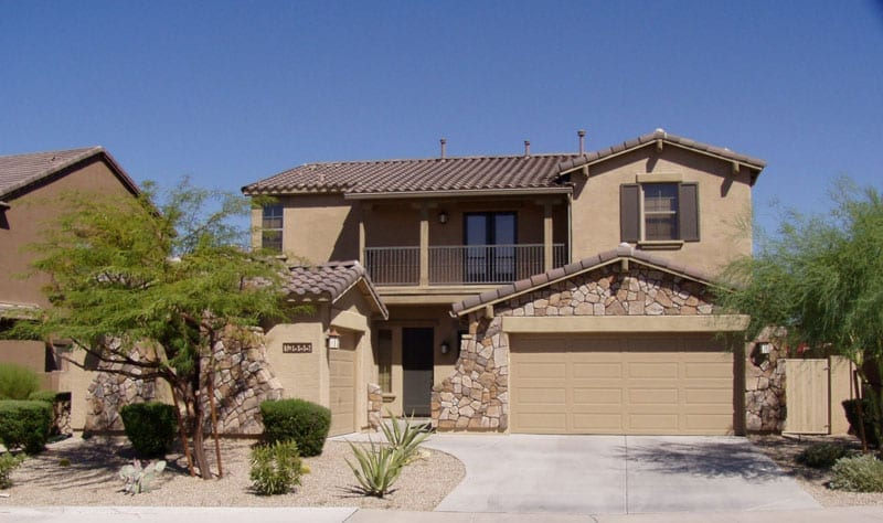 Pests in your new home in Arizona